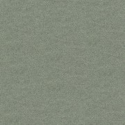 Polichrome Solid 4266005 Silk Grey