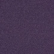 Touch & Tones 101 / 4174012 Grape